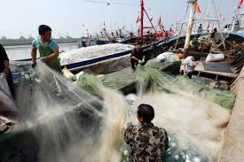 saving the seas from china u0027s bloated fishing industry time