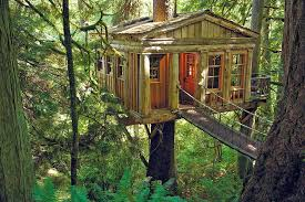 Eco Traveling  The Most Amazing Treehouses in the World  High
