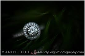 Cincinnati Photographers Mandyleigh Photo Keywords Best Engagement Photographers