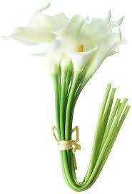 Calla Lily Home Decor by Amazon Com Calla Lily Bridal Wedding Bouquet 20 Head Latex Real