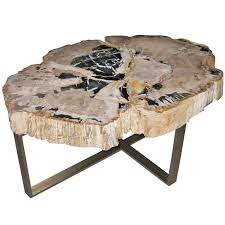 petrified wood end table petrified wood end table on furniture categories
