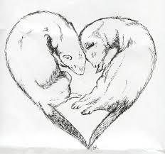 ferret love sketch by celestialimages on deviantart