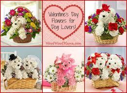 Flower Promotion Codes - 8 best valentine u0027s day flowers images on pinterest romantic