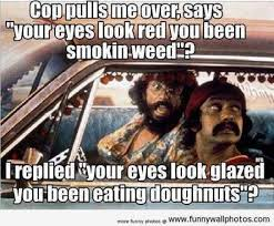 Funny Meme Pictures 2014 - you been smoking weed meme