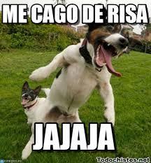 Risa Meme - me cago de risa perro saltando meme on memegen