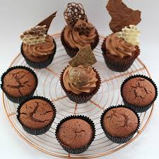 my cupcake addiction recipes the best chocolate cake u0026 cupcake