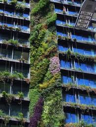Vertical Gardens Miami - photos patrick blanc u0027s enchanting vertical garden wonderland is