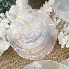 raw capiz shell rounds window pane oyster shells coastal home