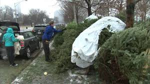 christmas tree recycling begins at 23 locations in chicago