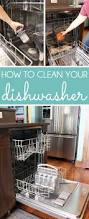 how to clean how to clean a dishwasher blue i style