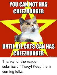 Meme Cheezburger - you can not has cheezburger untilallcats can has cheezburger quick