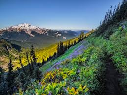 Washington state scenic calendar 2017