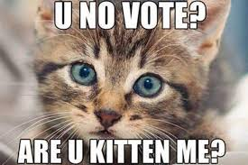 Vote For Me Meme - 20 sarcastic and funny voting memes that can totally make your day