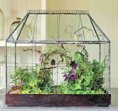 plant a beautiful terrarium terraria garden arbours and