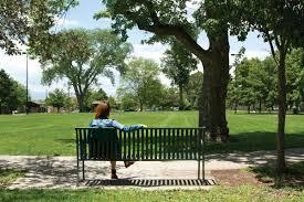 your guide to denver u0027s parks 5280