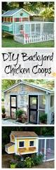 Backyard Chicken Coops Plans by Best 25 Chicken Coops Ideas On Pinterest Chicken Coups Diy