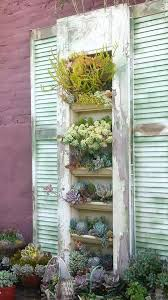 101 best vertical gardening images on pinterest succulents