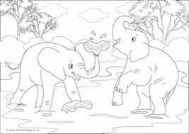 elephant colouring