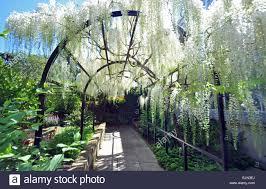 garden archway nz home outdoor decoration