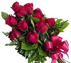 one dozen roses one dozen roses wrapped in cello
