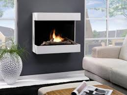 Bioethanol Fireplace Insert by Are Bio Ethanol Fireplaces Safe Safety Ecology Function