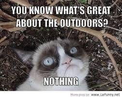 Tard The Grumpy Cat Meme - grumpy cat memes