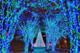 Norfolk Botanical Garden Lights Bundle Up Superior Botanical Gardens Lights 1