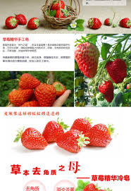 Natural Scent Skin Care Product Best Soap For Oily Skin Stawberry Fruit Soap