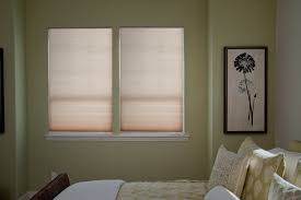 Cordless Window Shades Decorating Premier Roman Bali Cellular Shades With Blue Wall And