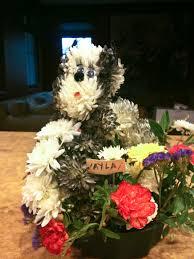 dog flower arrangement boston terrier floral arrangement funk in freeze