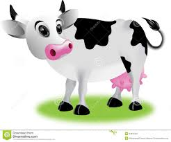 cow cartoon royalty free stock images image 34615589