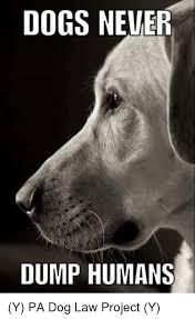 Law Dog Meme - dogs never dump humans y pa dog law project y meme on me me