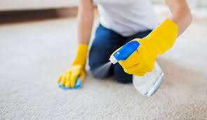 how to clean rugs learn how to clean carpets and rugs like a pro