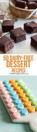 25 of the best ever dairy free cheese cake recipes dairy