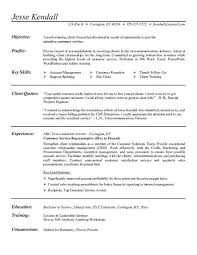 Resume Profile Examples For Customer Service by Customer Service Resume Entry Level Customer Service Resume