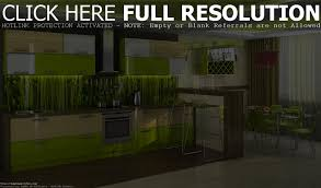 modern green kitchen beautiful lime green kitchen design displaying modern bright