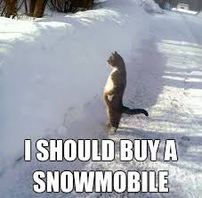 I Should Buy A Boat Meme Generator - 541 best arctic cat snowmobiling images on pinterest snow