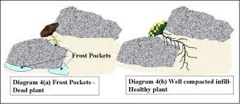 rock garden construction