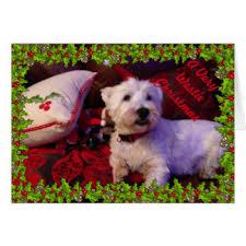 westie christmas cards u0026 invitations zazzle co uk