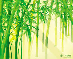 45 bamboo wallpapers bamboo hd images guoguiyan collection