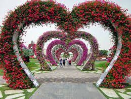 dubai miracle garden largest flower garden in the world cute