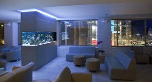 aquarium betta tanks fish tank room divider 40 gallon fish tank