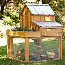 Building Backyard Chicken Coop 24 Best Garden Images On Pinterest Backyard Chickens Chicken