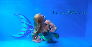 live mermaids swimming custom traveling tank mermaid aquariums