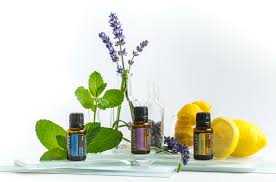 Doterra February 2017 Product Of The Month Our Doterra Monthly Specials Essential Oils For Guide