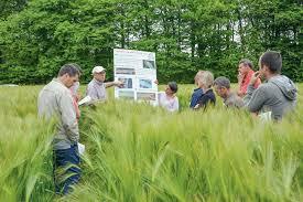 chambre agri des céréales saines en réduisant la fréquence de traitement