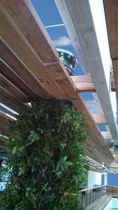 Vertical Gardens Miami - 11 best pérez art museum miami hanging gardens images on pinterest