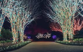 holiday lights at cheekwood cheekwood estate u0026 gardens
