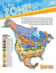 Climate Zones For Gardening - best 25 gardening zones ideas on pinterest fall planting