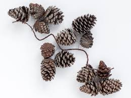 instructions for making pinecone garland for the holidays how